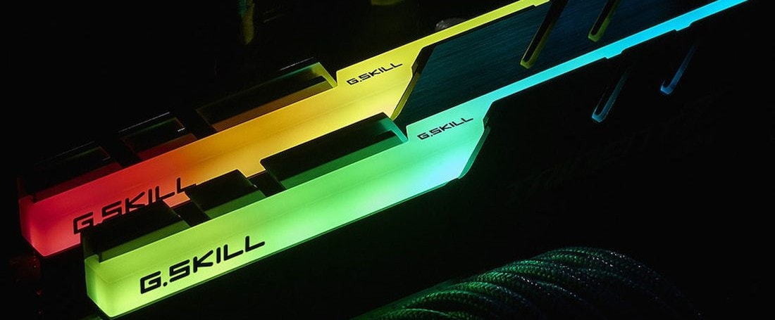 two rgb g skill ram sticks mounted
